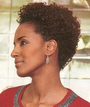 Terrific 15 Top Black Hairstyles For Fall 2014Black Hair Style Black Hair Hairstyles For Women Draintrainus