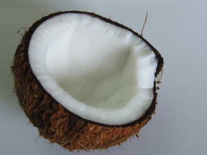 The coconut – one of nature's best fruits